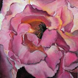 Coeur de rose  - Huile - 30cm x 30cm - CP