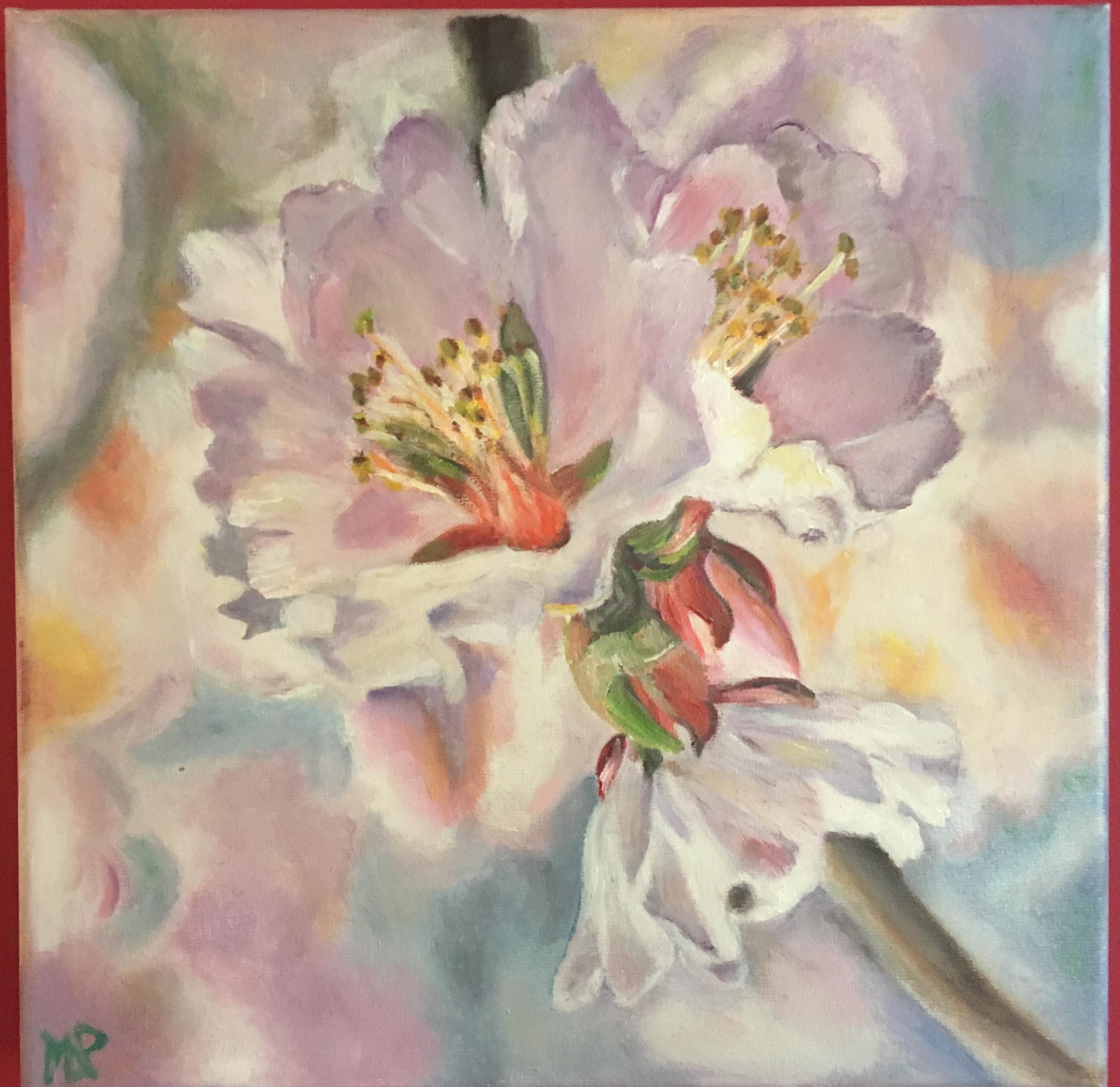 Fleurs d amandier
