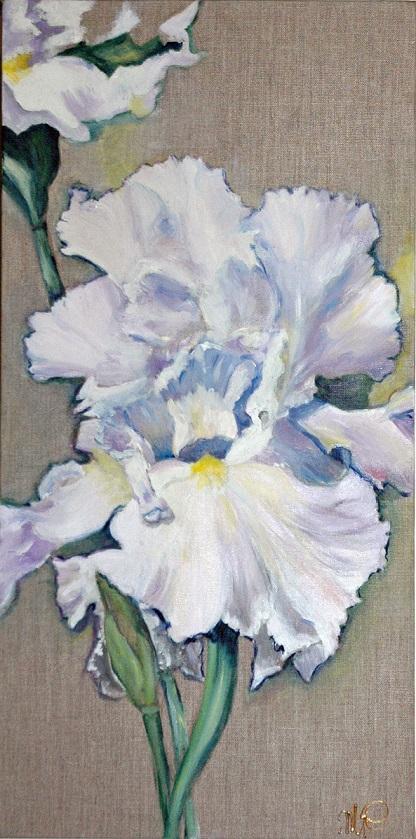 Iris blanc - Huile - 60cm x 30 cm